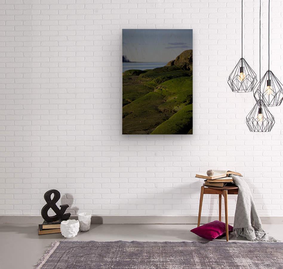 Mossy rock beach  Wood print