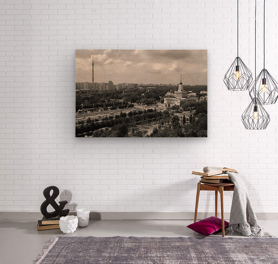 Moscow Air View I  Wood print