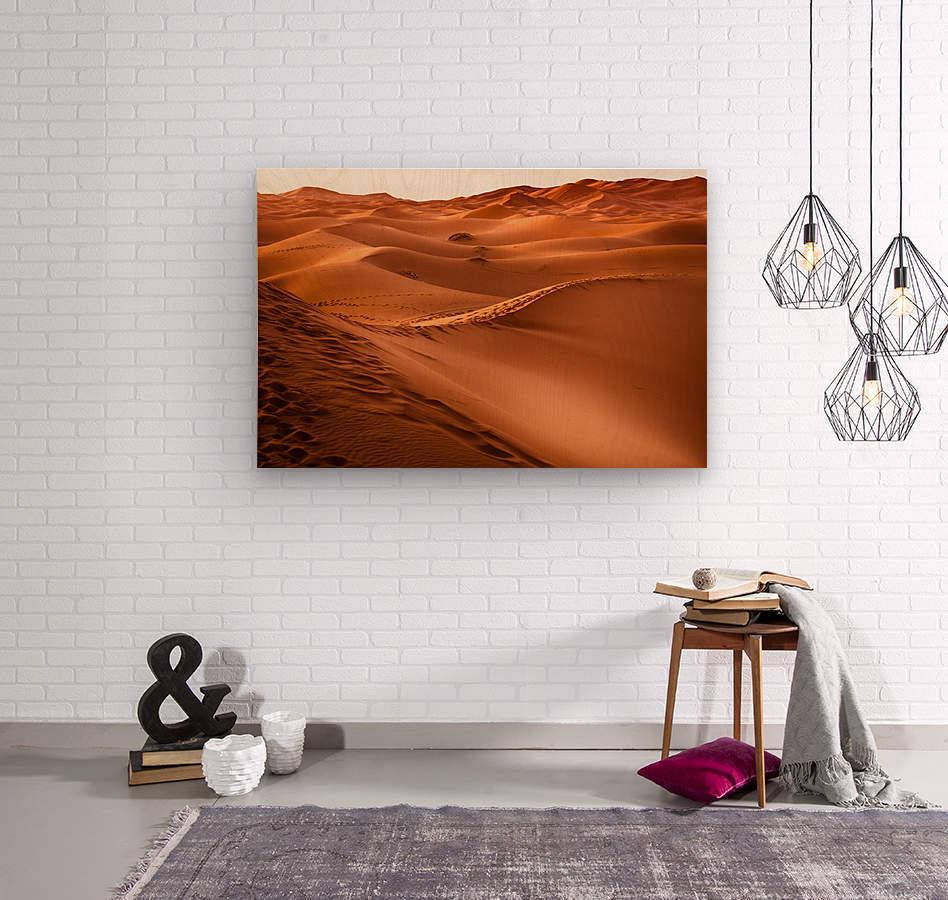 Beautiful Nature Landscape Hot Sun Desert Sahara Sand Dune Dunes Hot Climate Photography landscape photo Scenery  Wood print