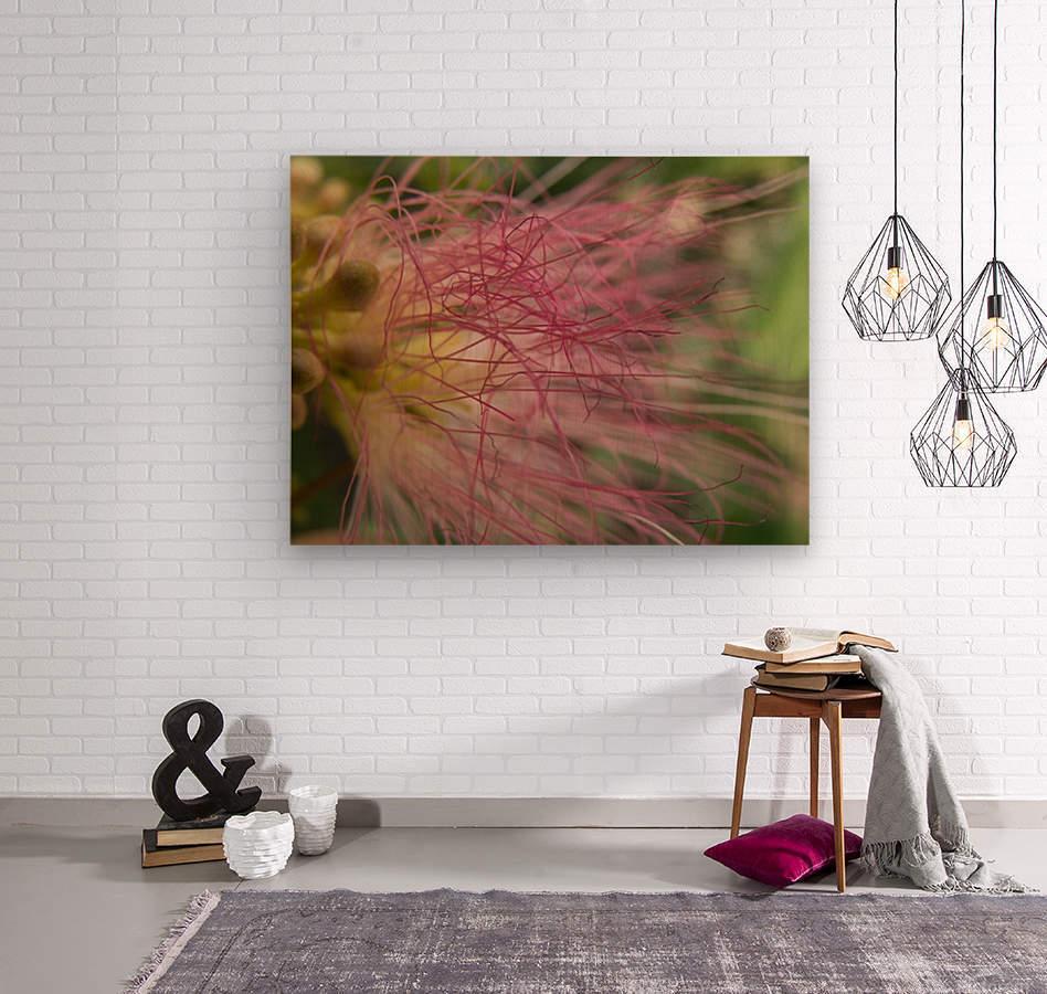 Pink Tangles  Wood print