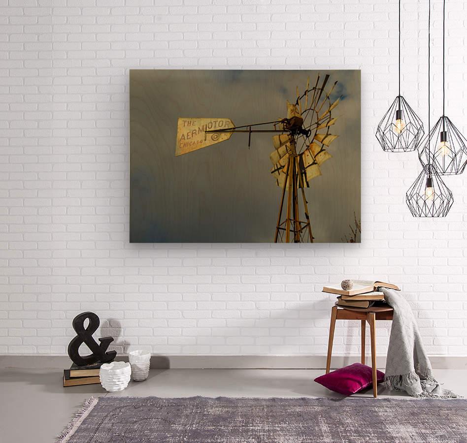 Aeromotor Windmill  Wood print