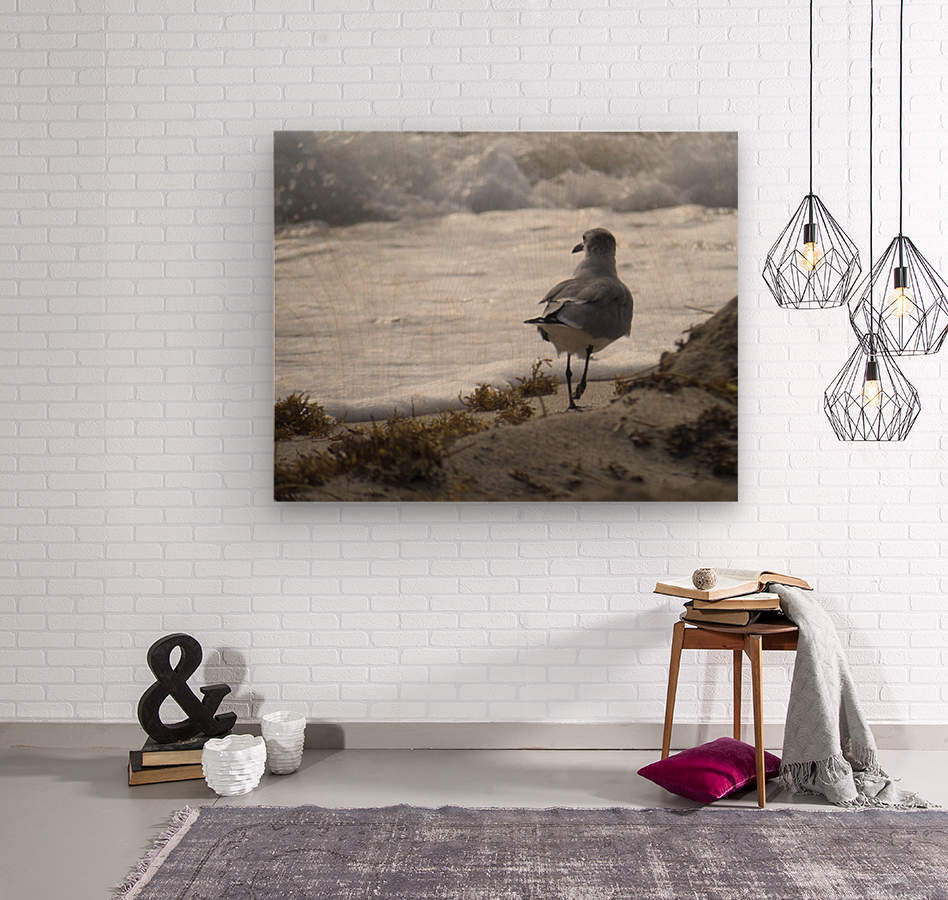 Seagull running  Wood print