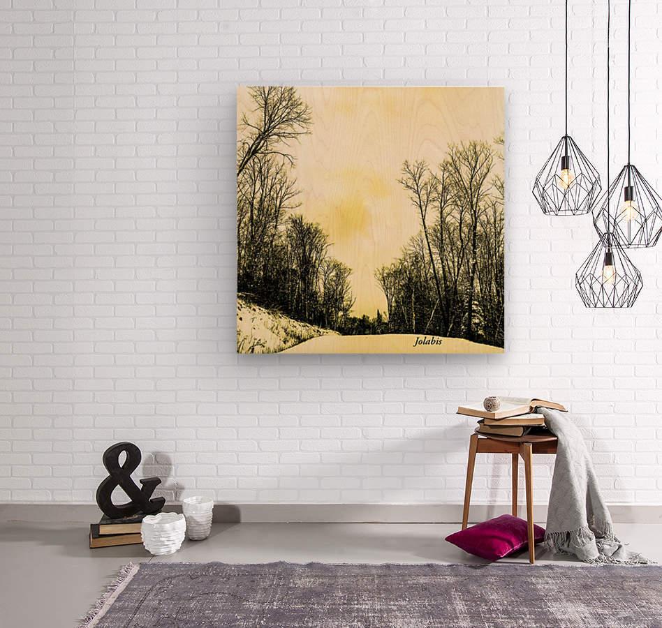 58AD1A24 DE23 4409 834D 74F66B329659  Wood print