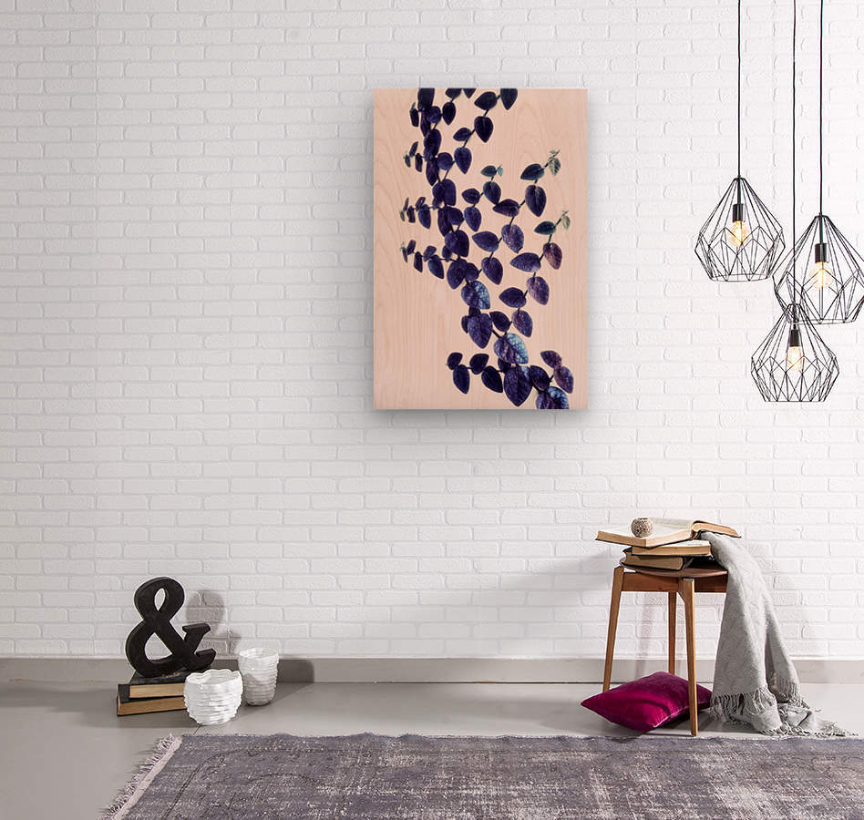 Bindweed in Violet  Wood print