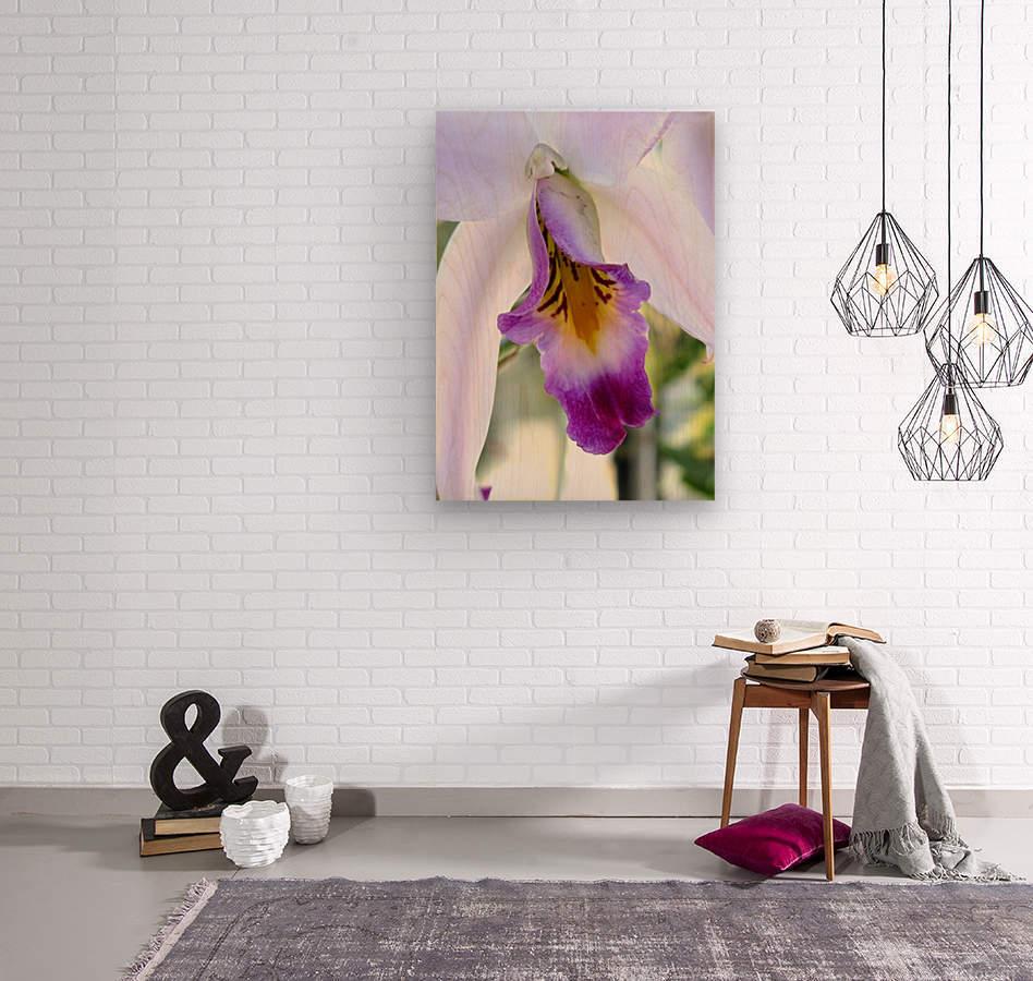 Orchid Poem  Wood print