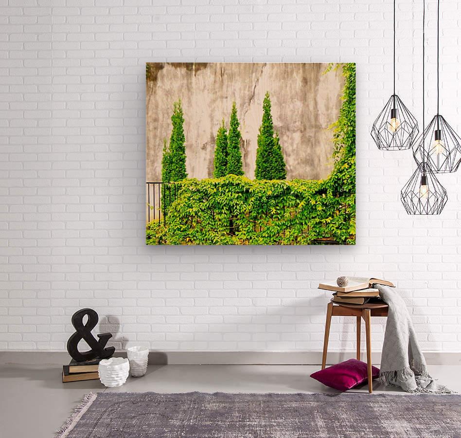 DSC00265  Wood print