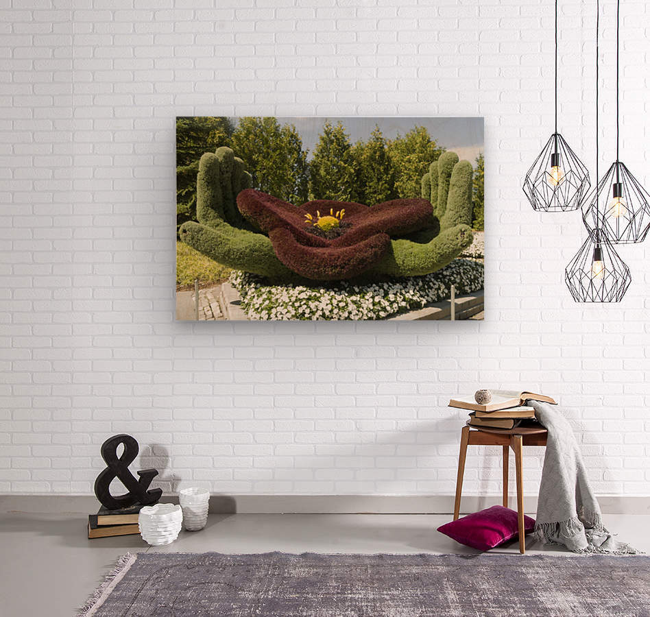 In Flanders Field: The Poppy Symbol of Remembrance  Wood print
