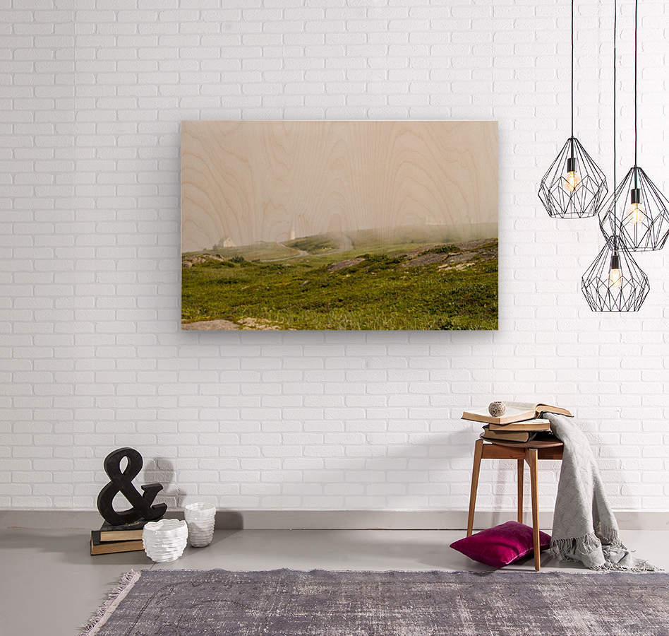 View from Cape Spear Walking trails 15  Wood print