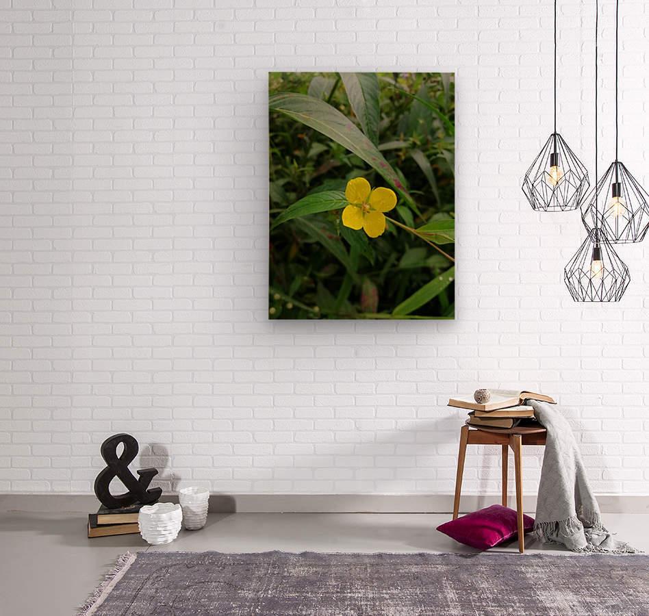 IMG_20190210_125037  Wood print