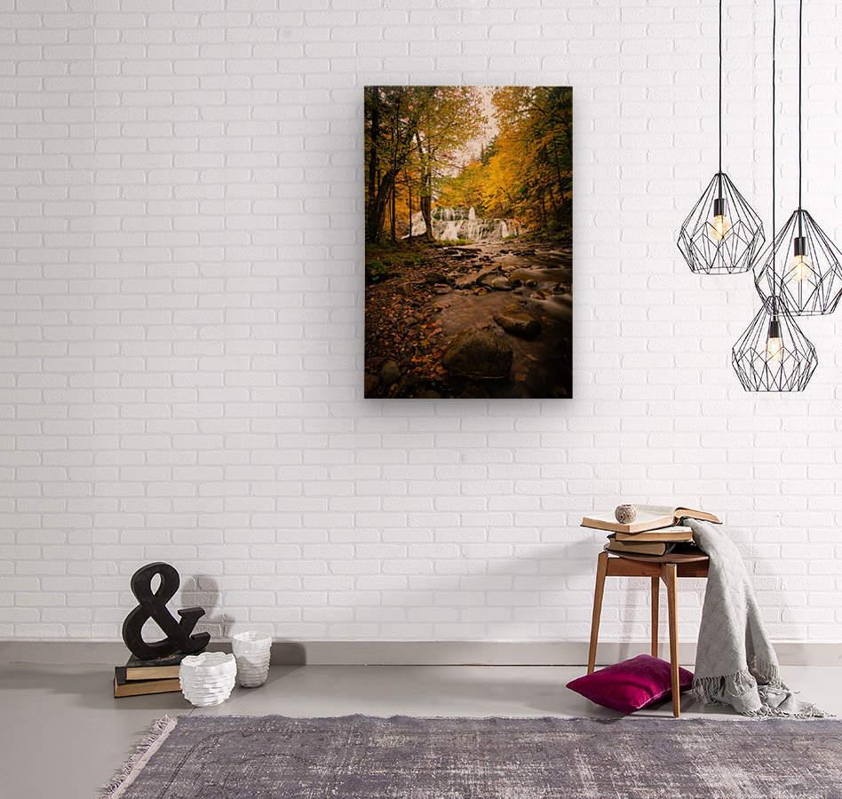 Egypt Falls  Wood print