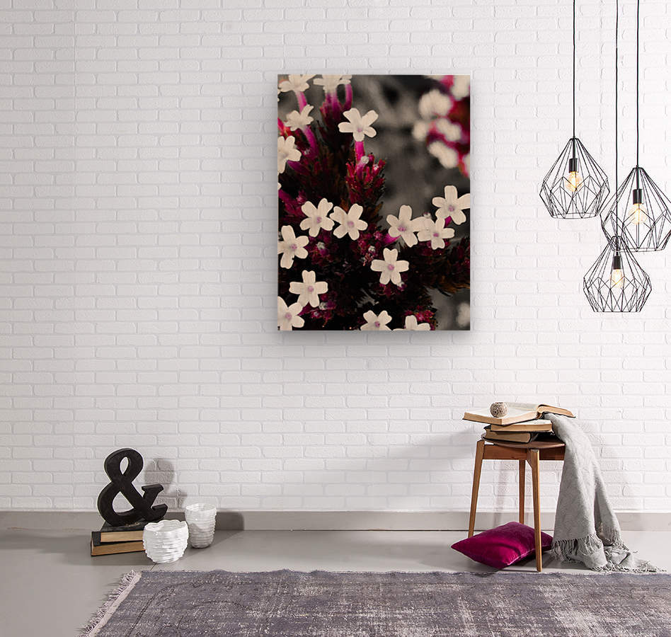 White bloom  Impression sur bois