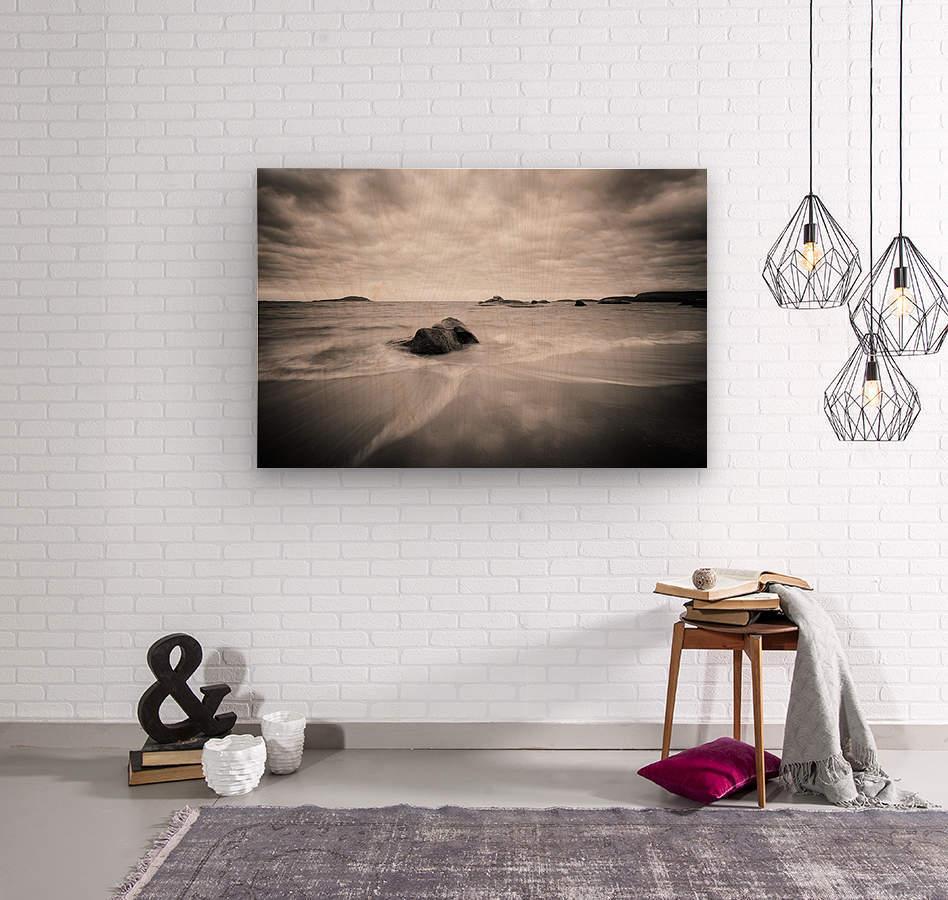 Peaceful Shore  Wood print
