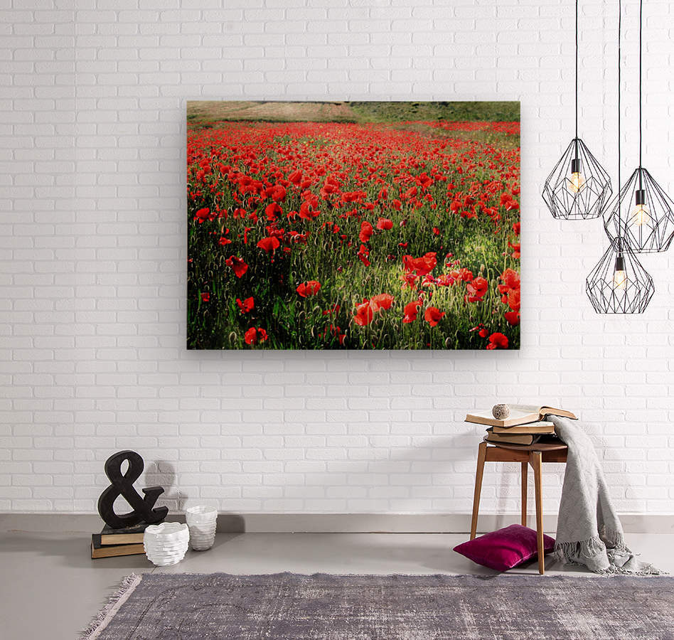 Rolling Fields with Poppies  Wood print
