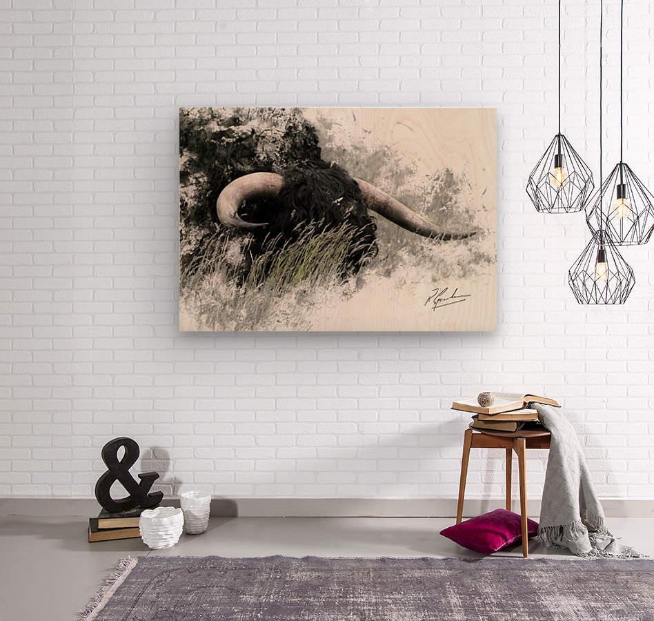 Bull in long grass  Wood print