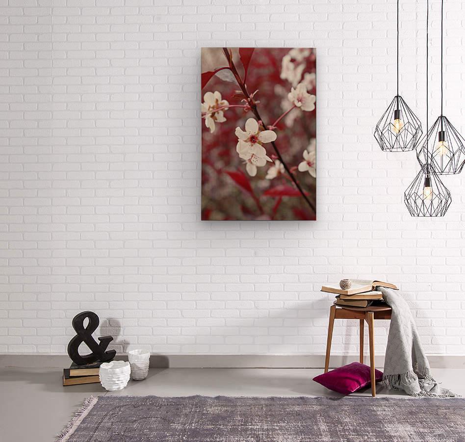 White Blood 2  Wood print