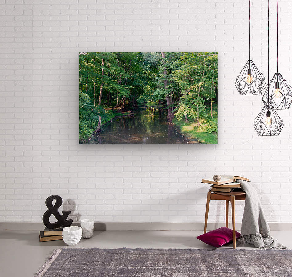 Holley Erie Canal Falls 3  Wood print