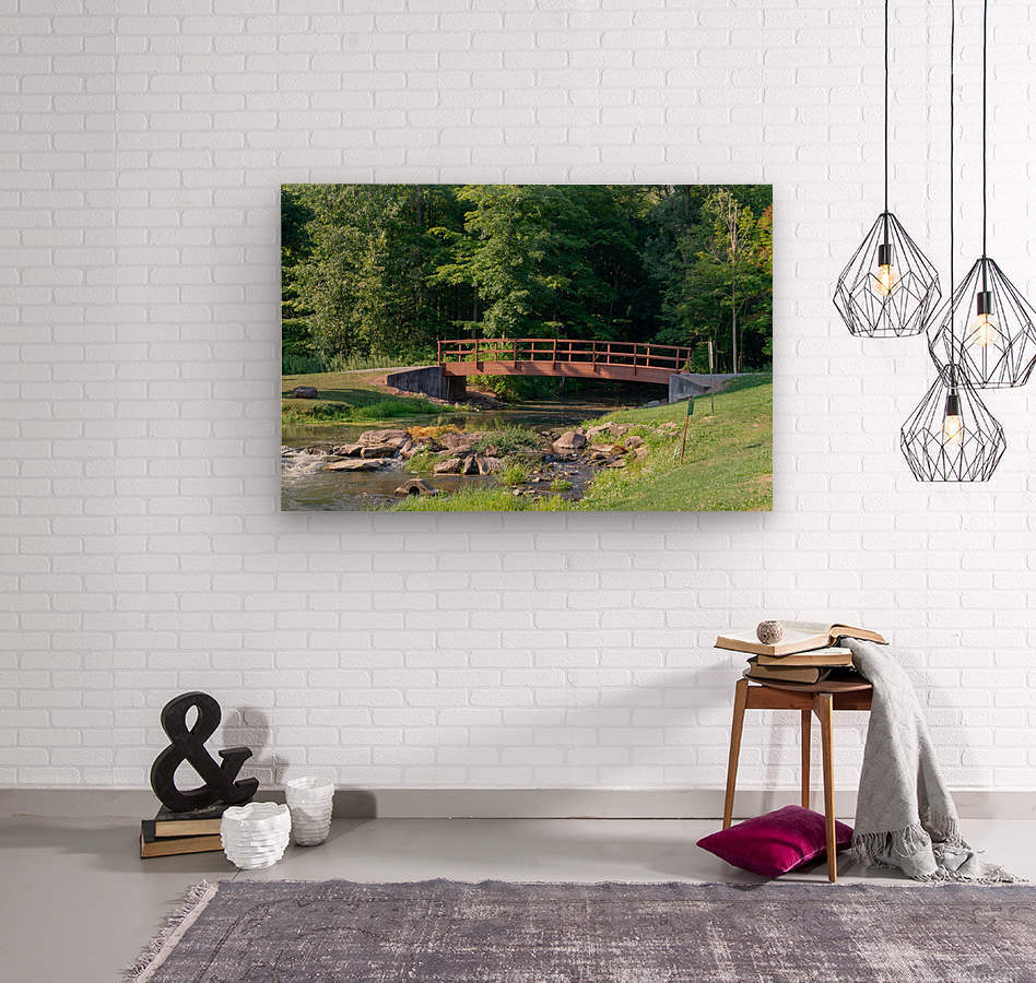 Holley Erie Canal Falls 5  Wood print
