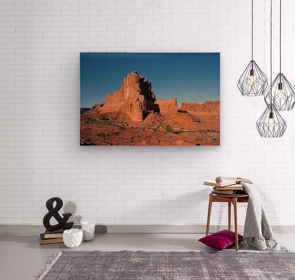 Desert Scape  Wood print