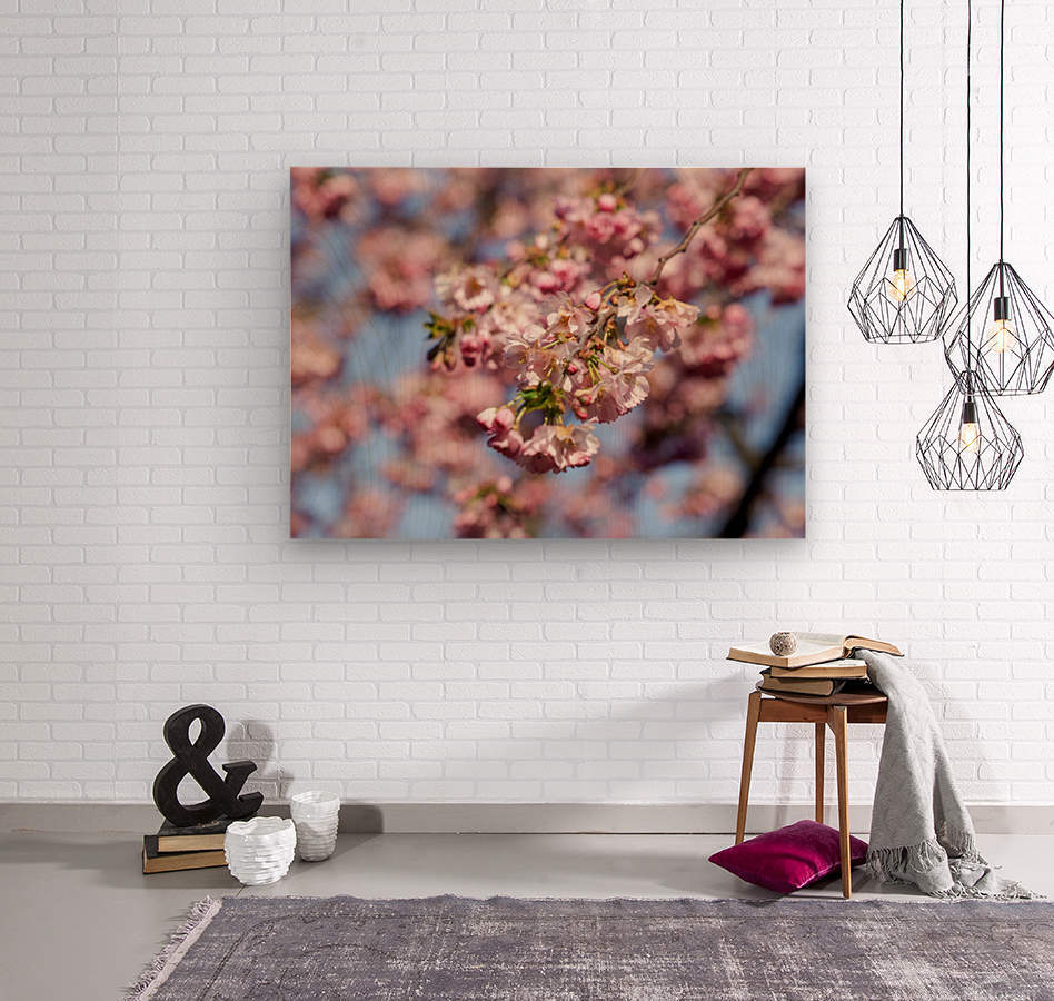Cherry blossom Red  Wood print