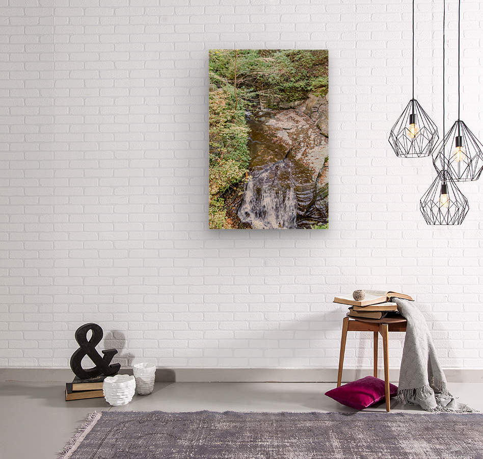 Eagle Cliff Falls 4  Wood print