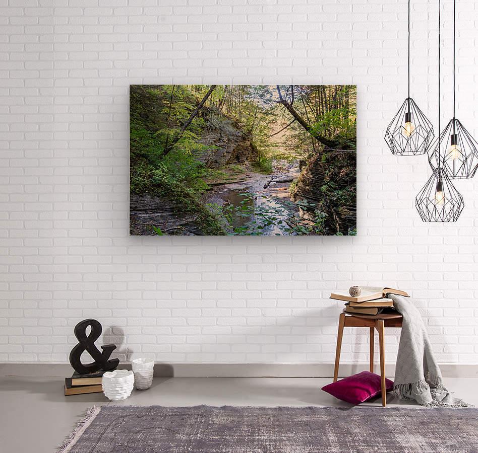 Eagle Cliff Falls 19  Wood print