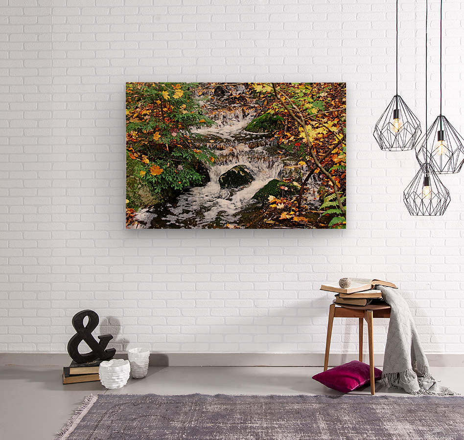 Autumn Flow  Wood print