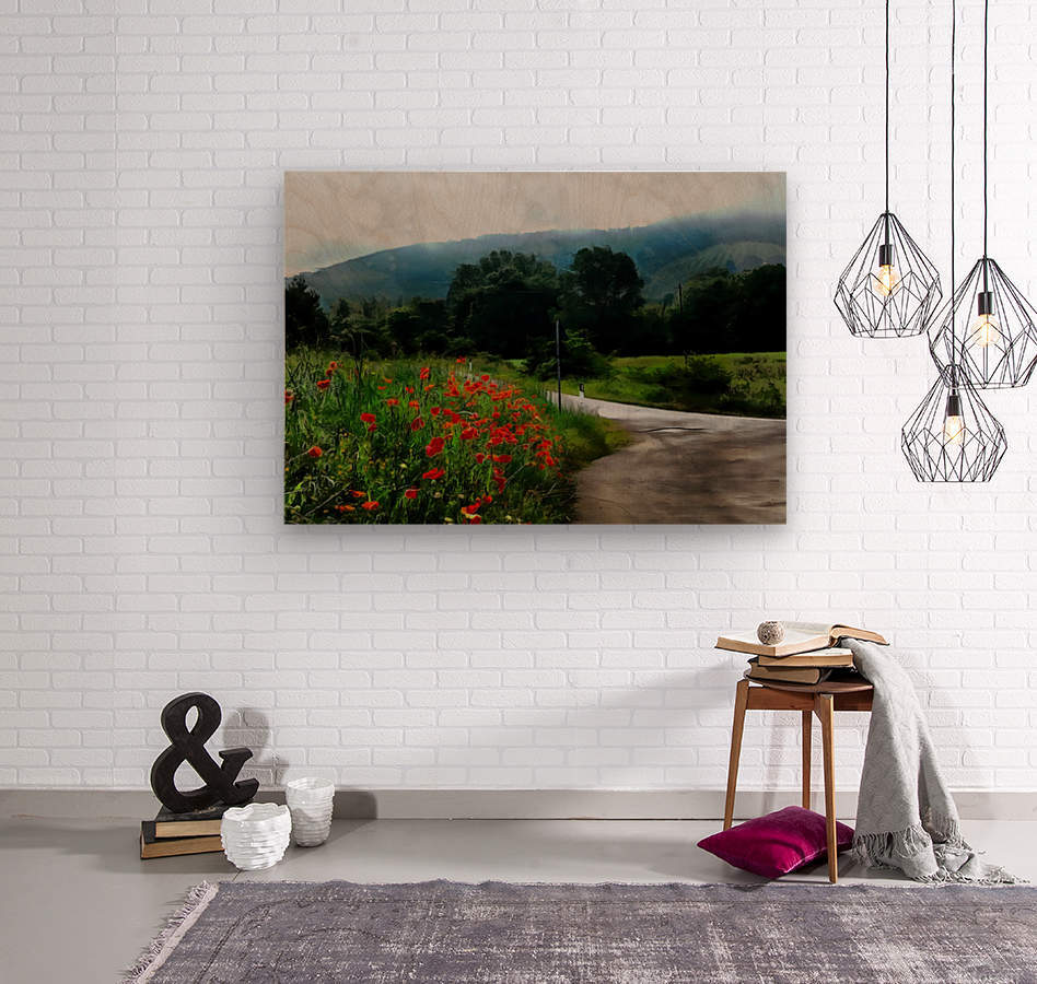 The Poppy Road to Happiness  Wood print
