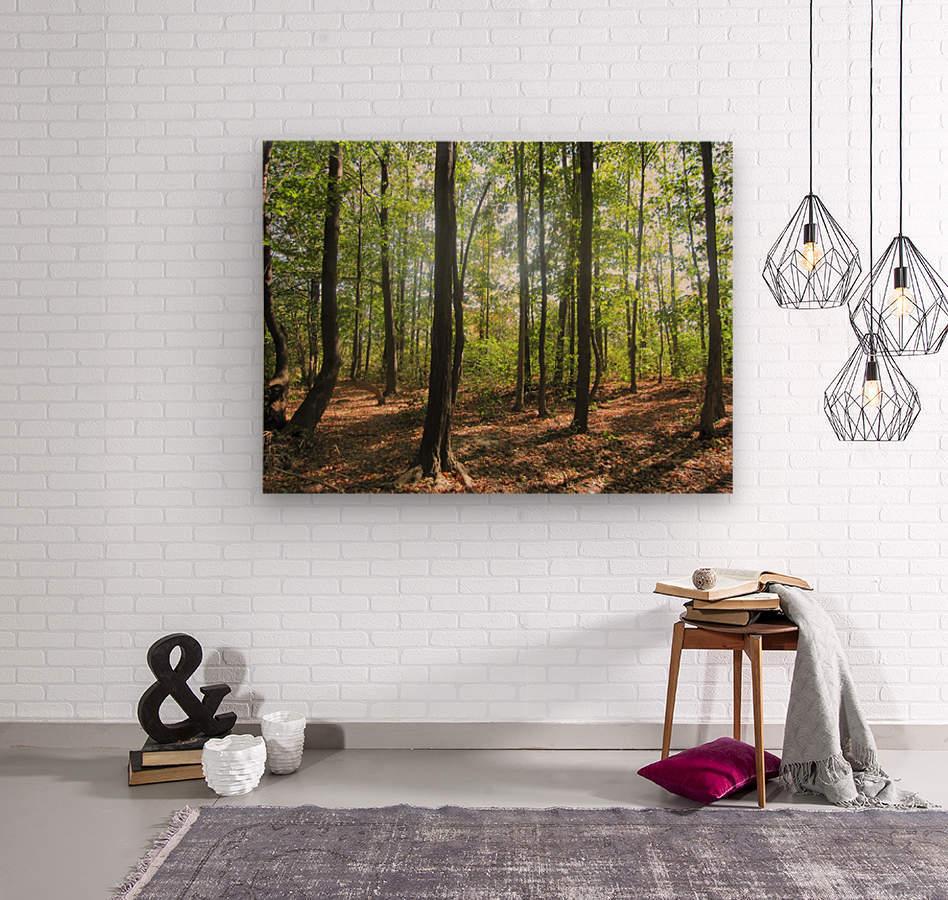 Landscape (51)  Wood print