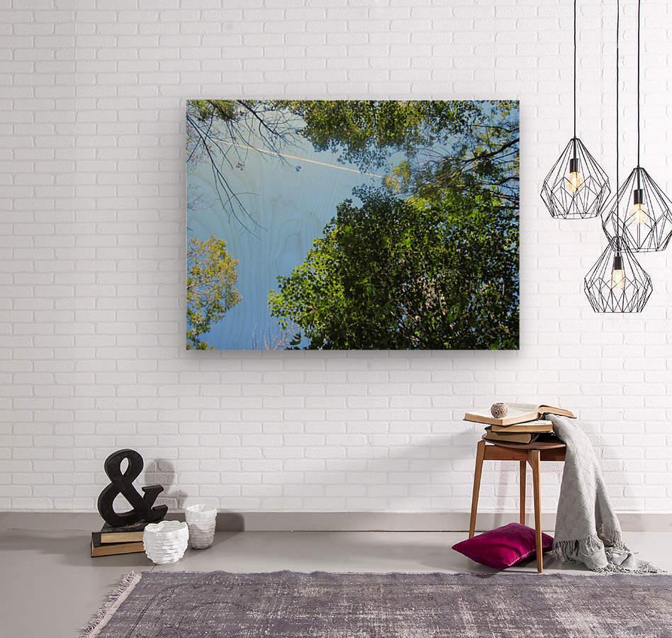 Landscape (200)  Wood print