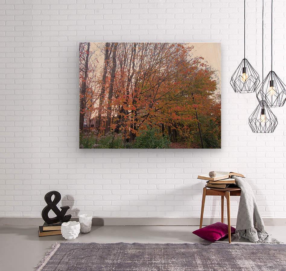 Fall Season (11)  Wood print
