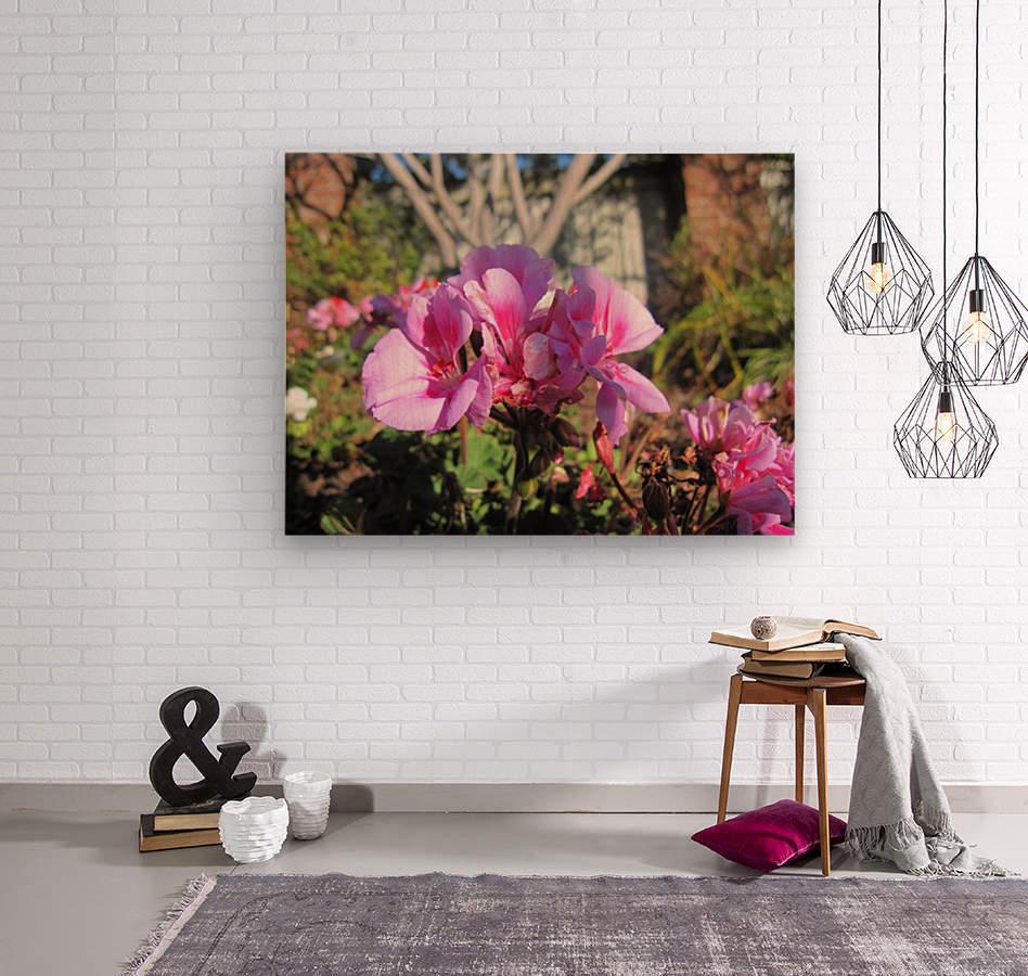 Flower (111)  Wood print