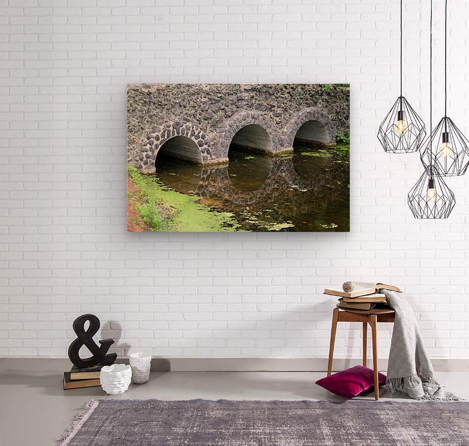 Stone Bridge and Reflection 4 Dow Gardens 3 062618  Wood print