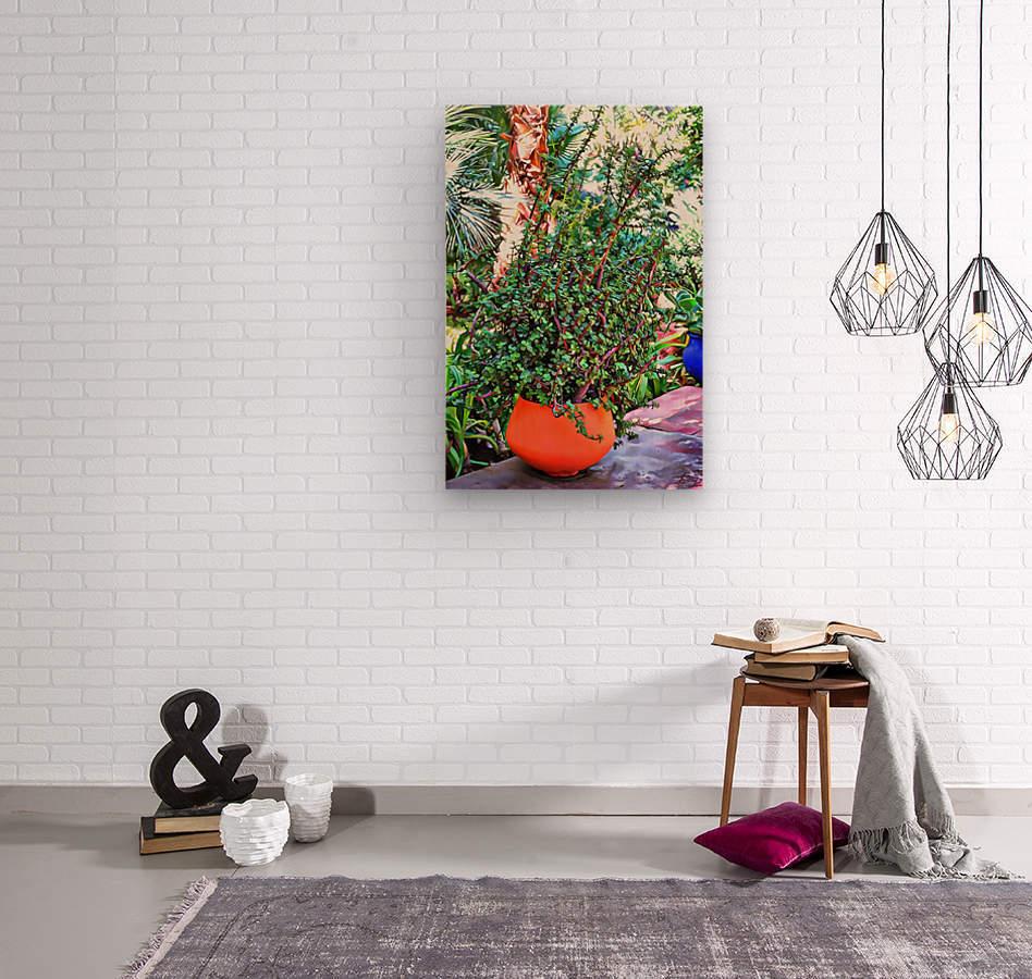 Colorful Plant Pots Marrakesh 10  Wood print