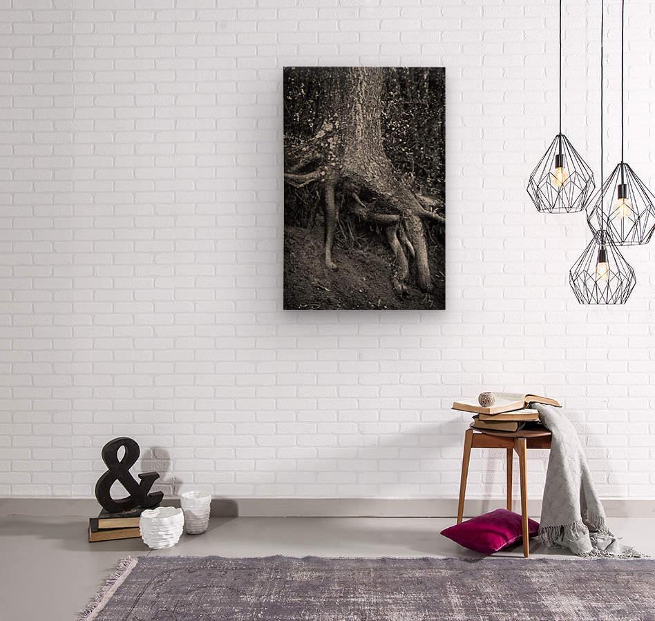 Roots...  Wood print