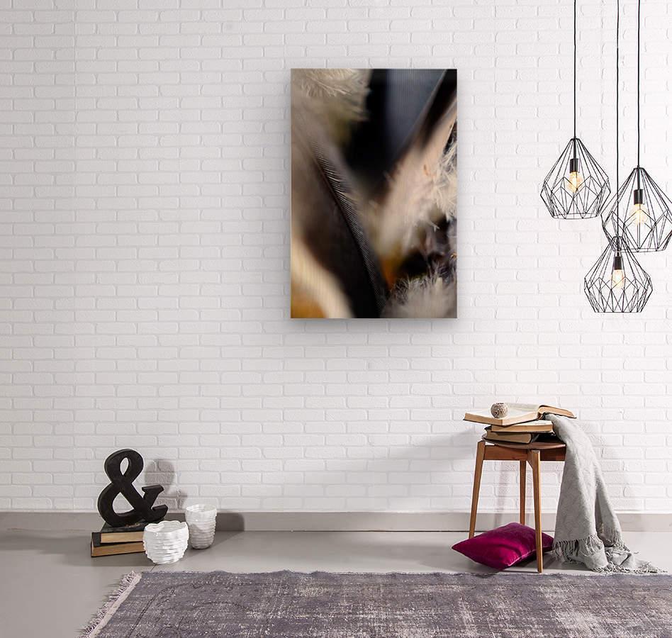 Abstract Macro Nature Photography 99  Wood print