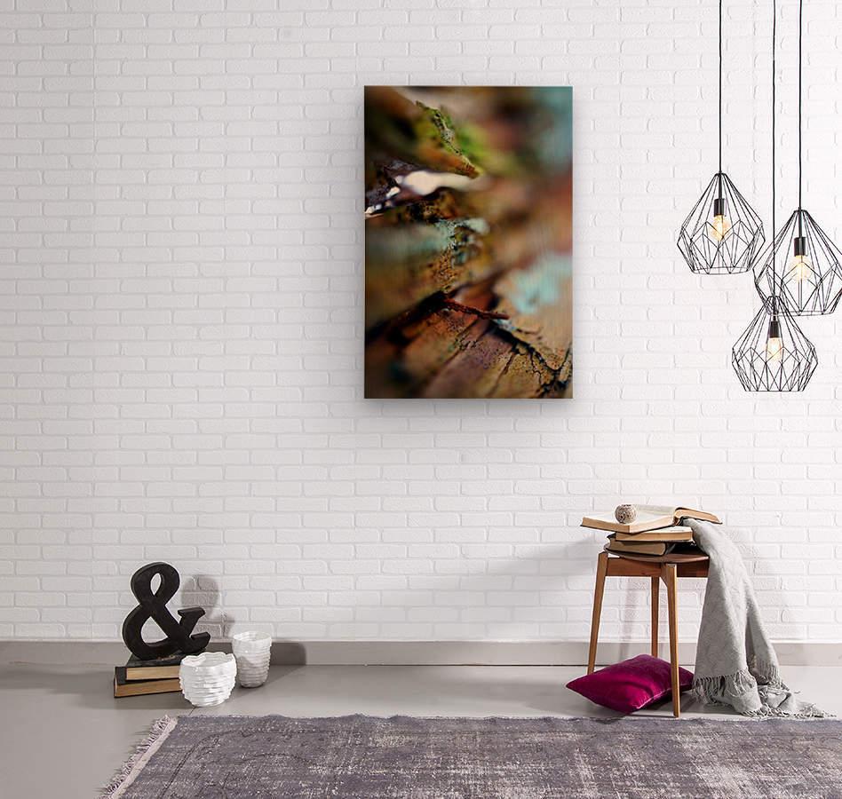 Abstract Macro Nature Photography 95  Wood print