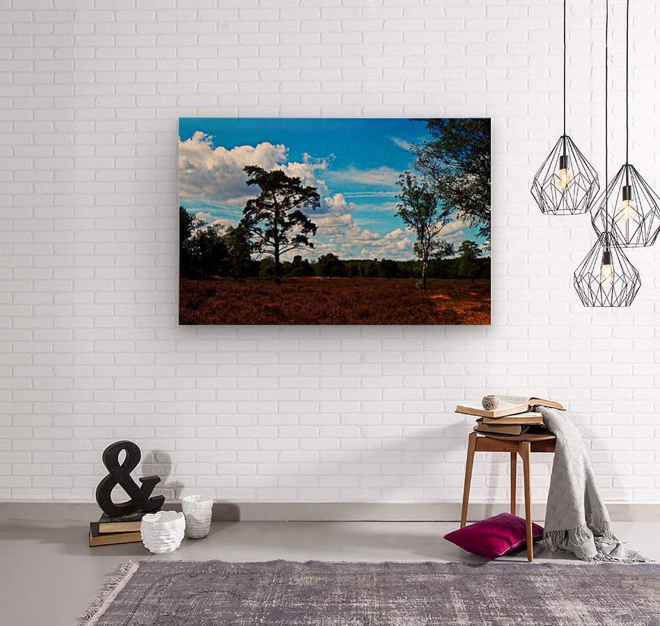 Dunes Landscape 03  Wood print