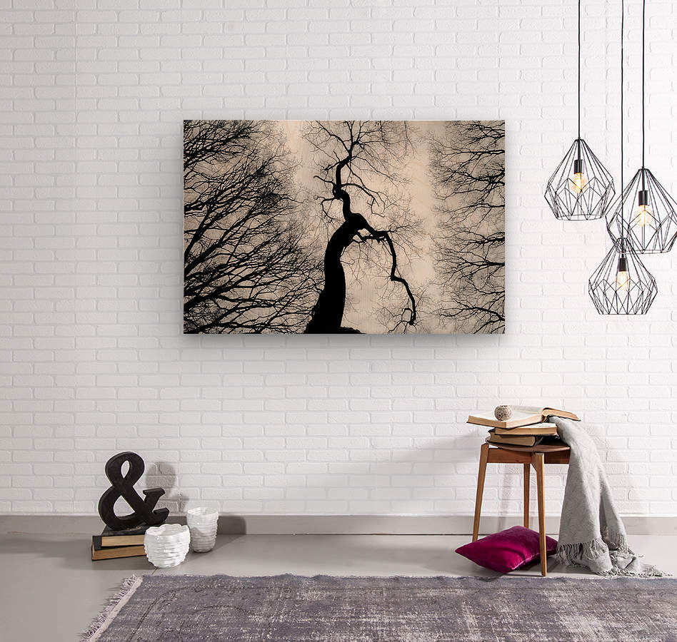Black and White Abstract Tree 02  Wood print