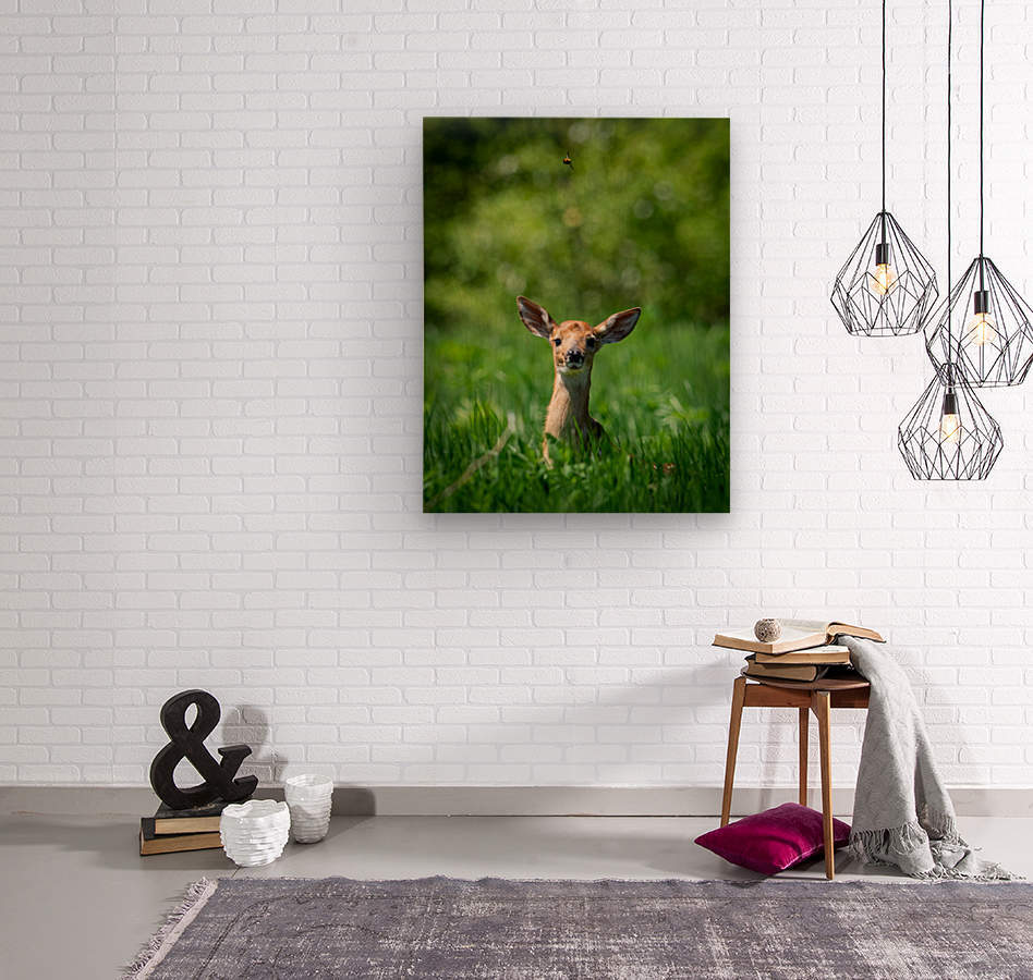 The Fawn and the Bumblebee  Wood print