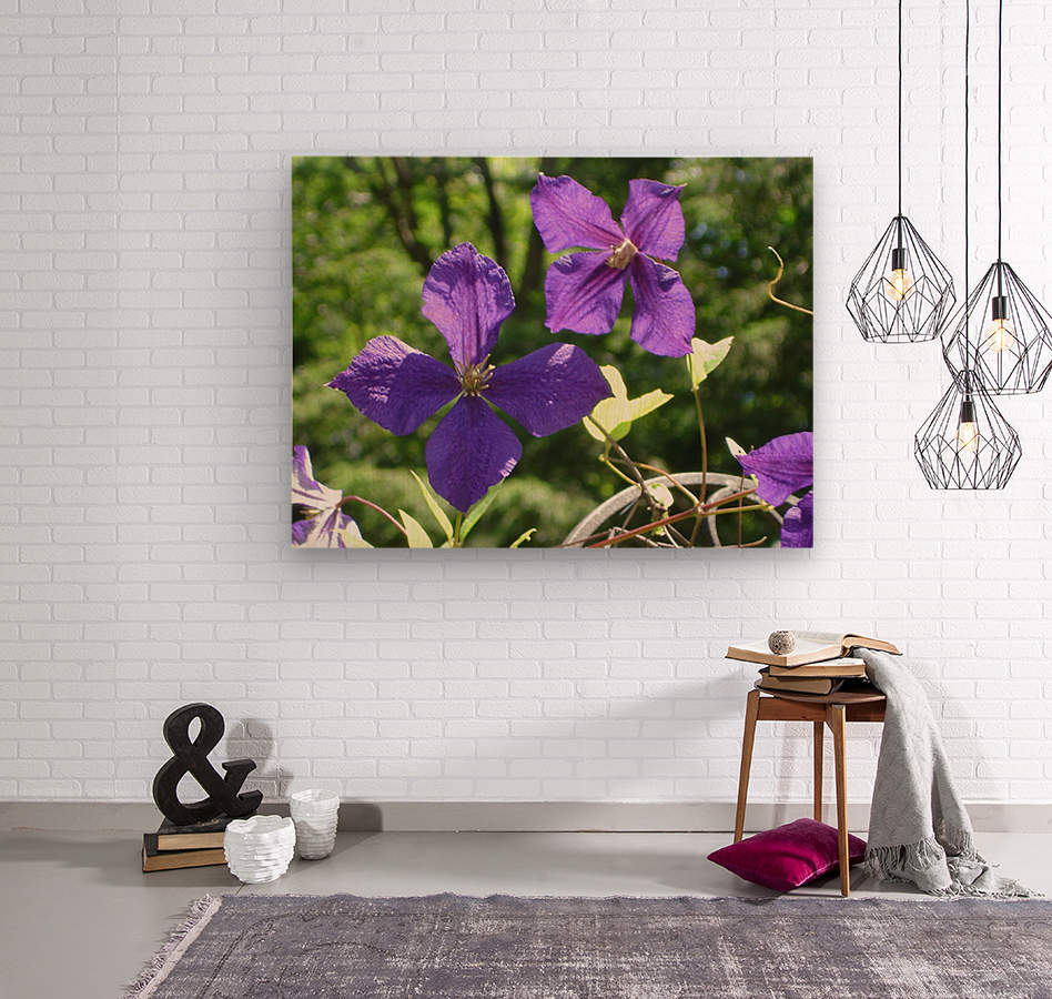 Flower Study -9  Wood print