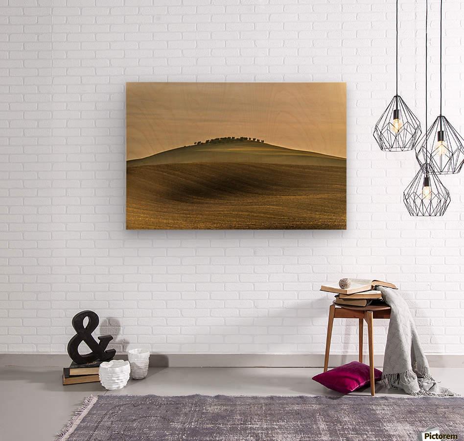 Toscane  Wood print