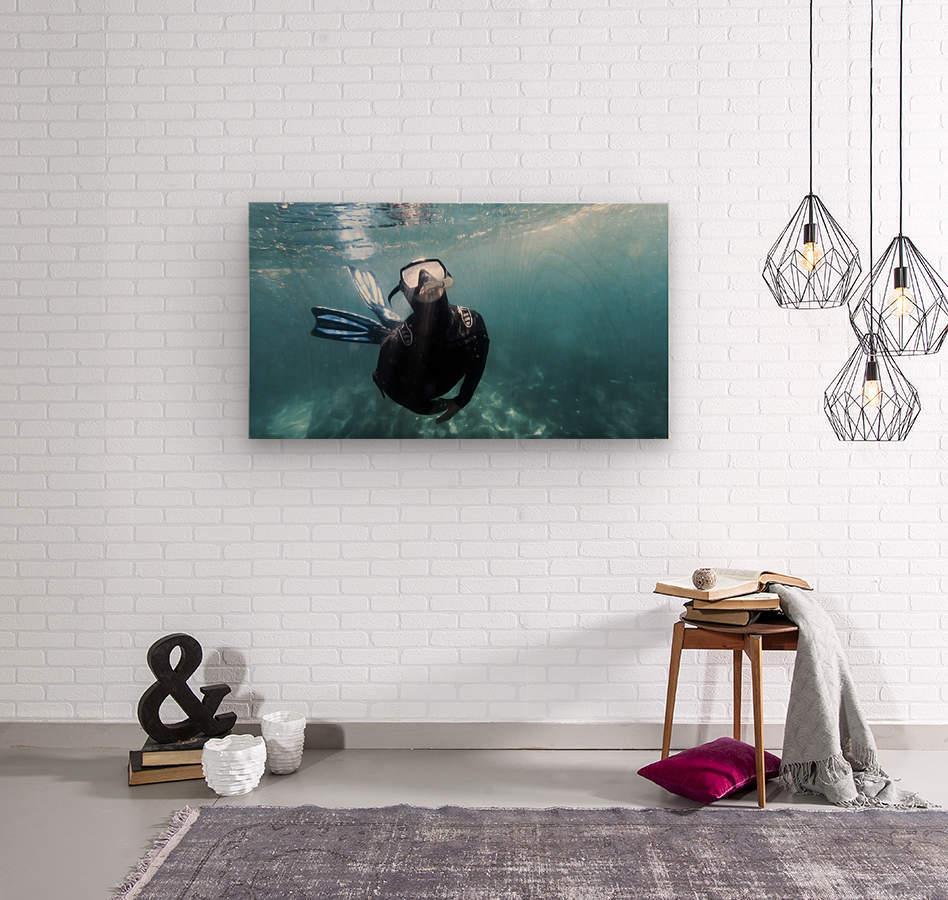 freediver  Wood print
