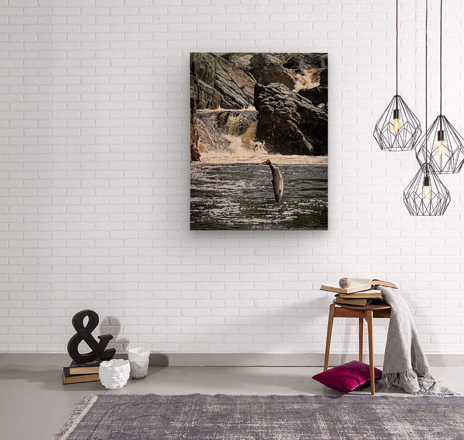 Leaping Silver   Wood print