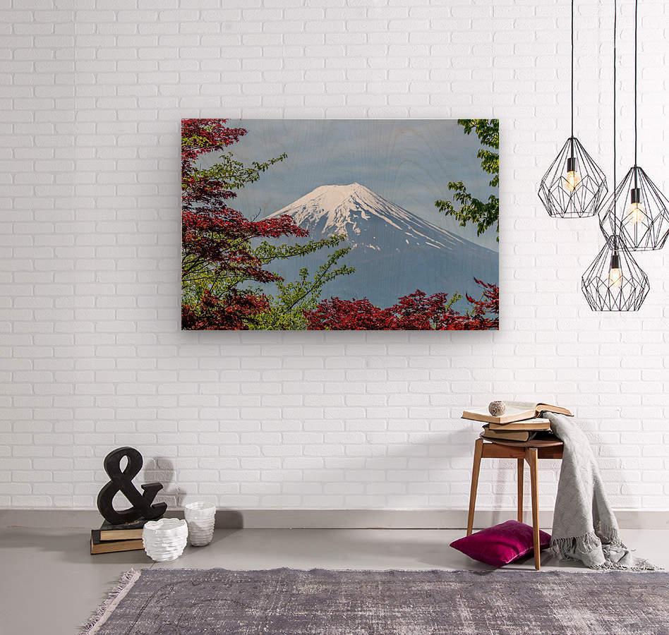 mountain mount landscape japanese  Wood print