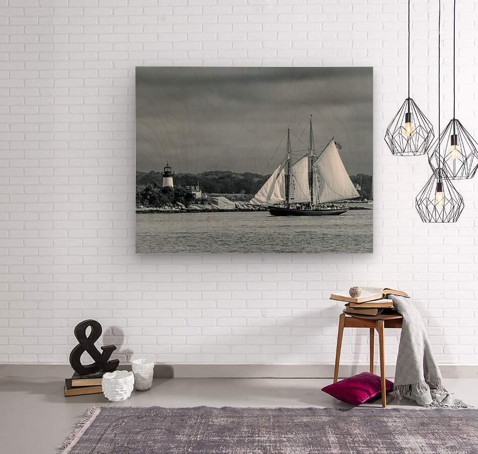 Harbor Cruise  Wood print