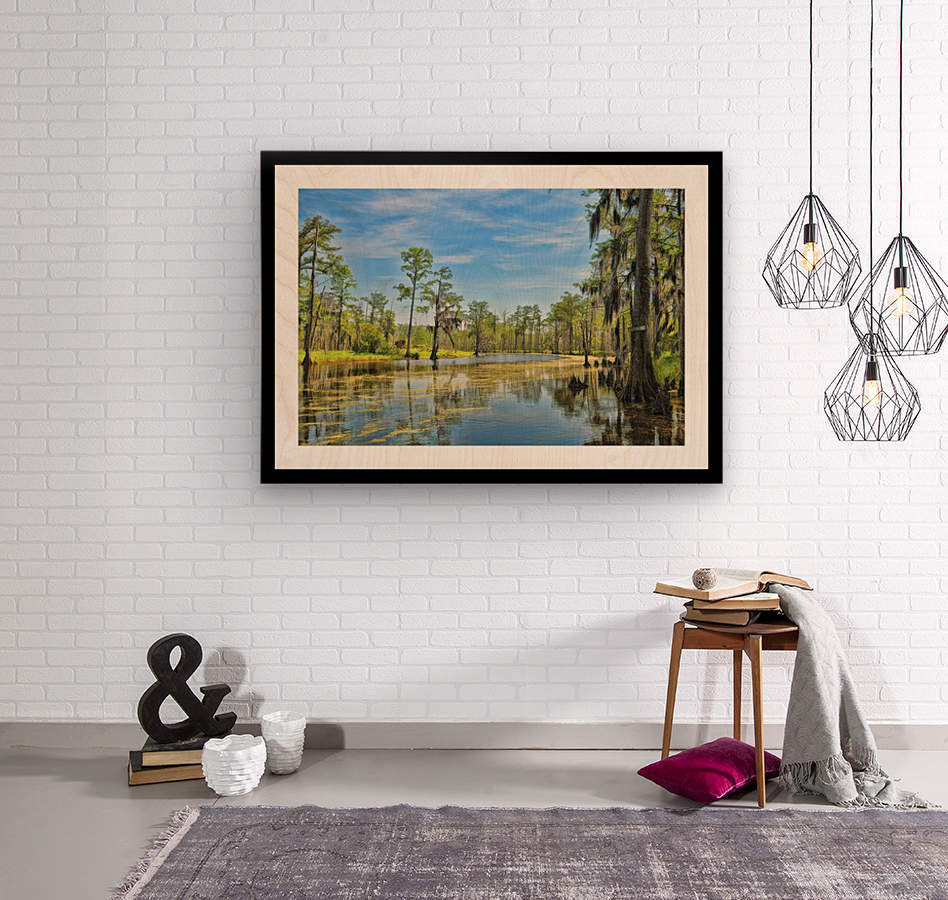 Down on the Bayou - HDR - White Border  - Black Border  Wood print