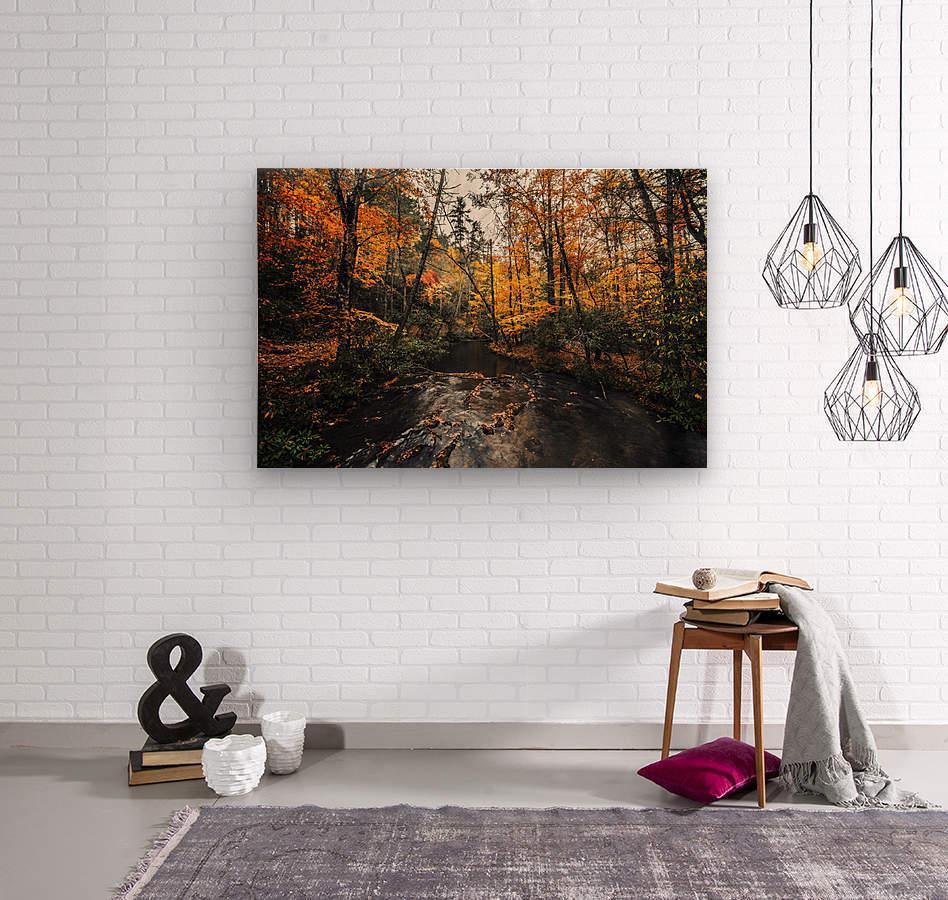 Smokey Mountain River  Wood print