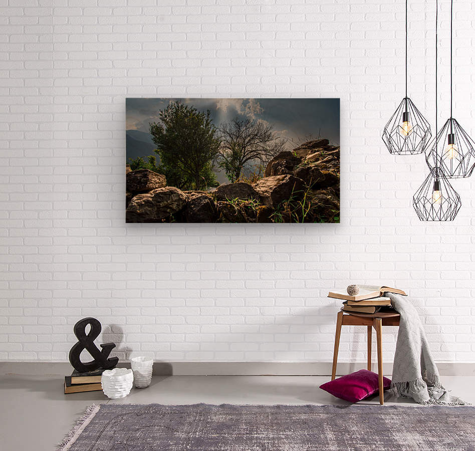 DSC_8529  Wood print