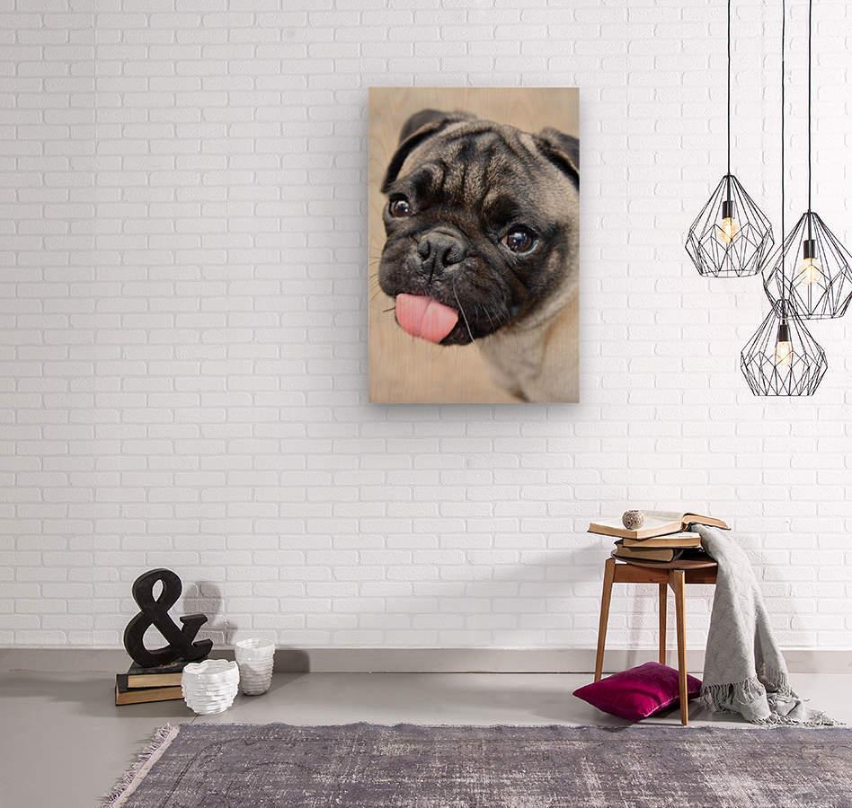 Pug Joker  Wood print