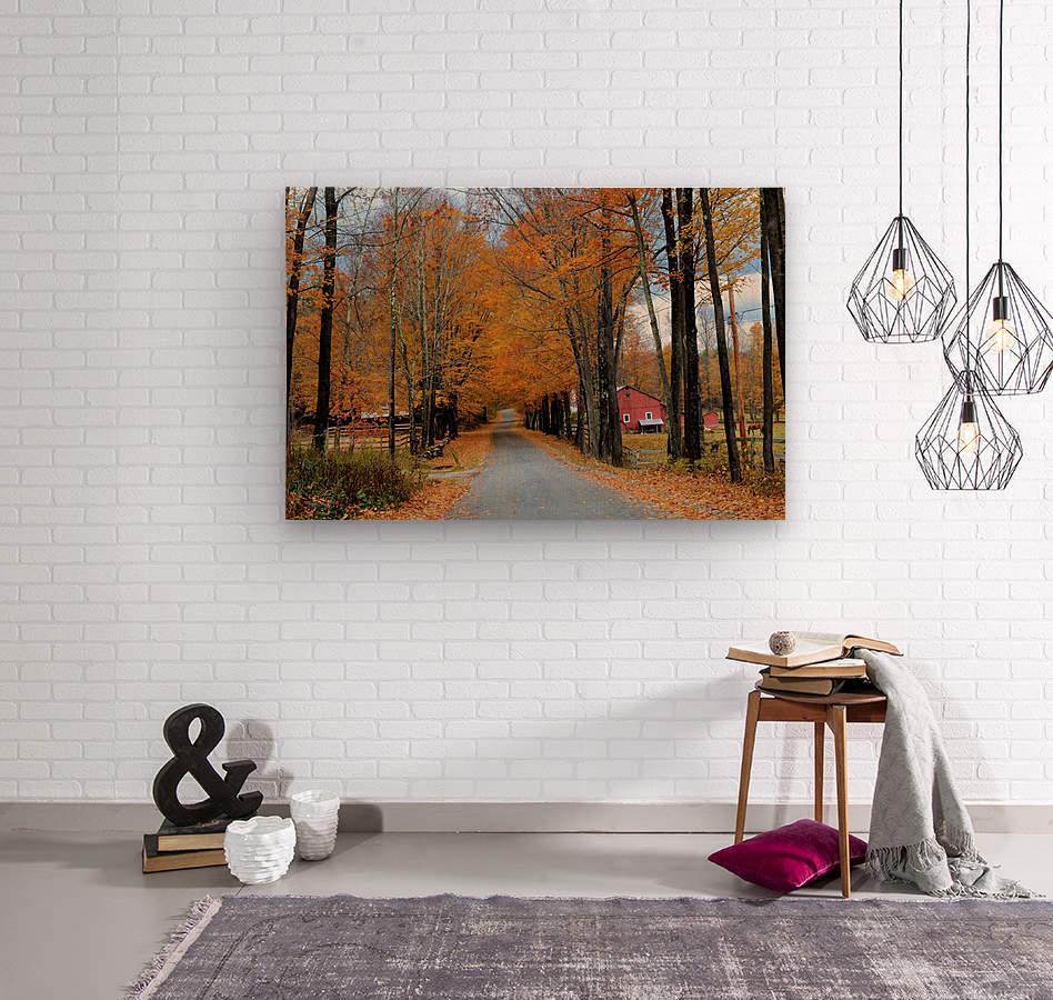 Autumn Three Maple Dr. Manchester VT  Wood print
